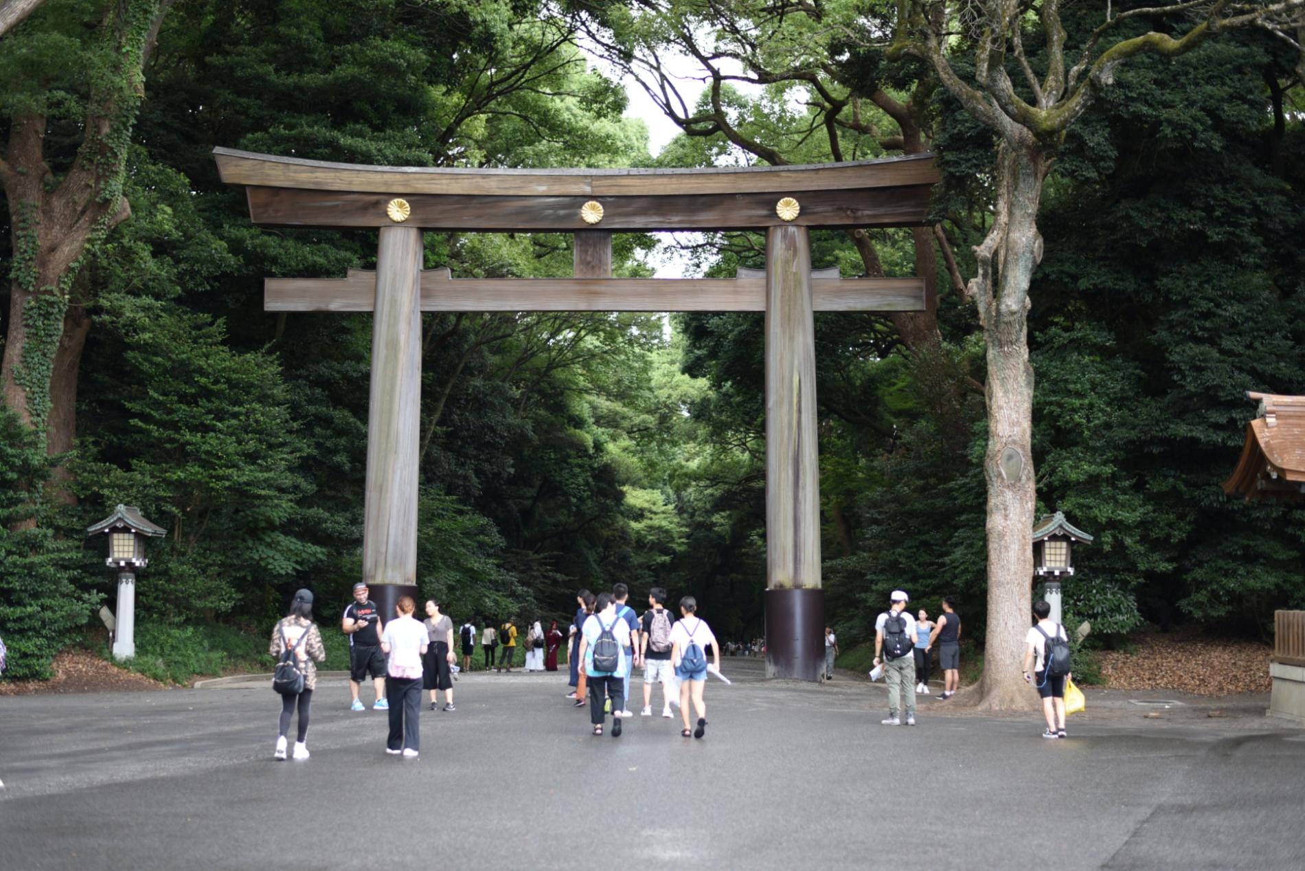 Świątynia Meiji-jingū w Tokio, czyli relaks w centrum mega-miasta