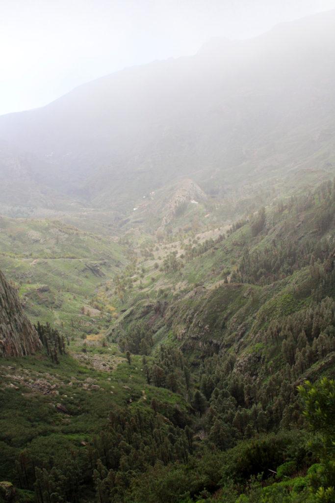 La Gomera - widok na zieleń we mgle z Mirador de Los Roques