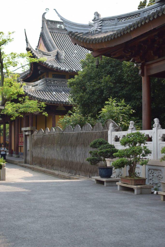 świątynia Longhua i drzewka bonsai
